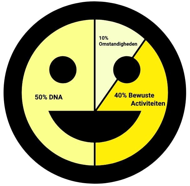 Pie chart afbeelding in de vorm van een smiley die de verhouding aangeeft van geluk